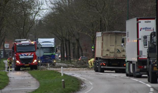 De brandweer moest er o.a. aan te pas komen op de Gemertseweg, waar een flinke boom/tak op de weg lag  | Fotonummer: b93fa6