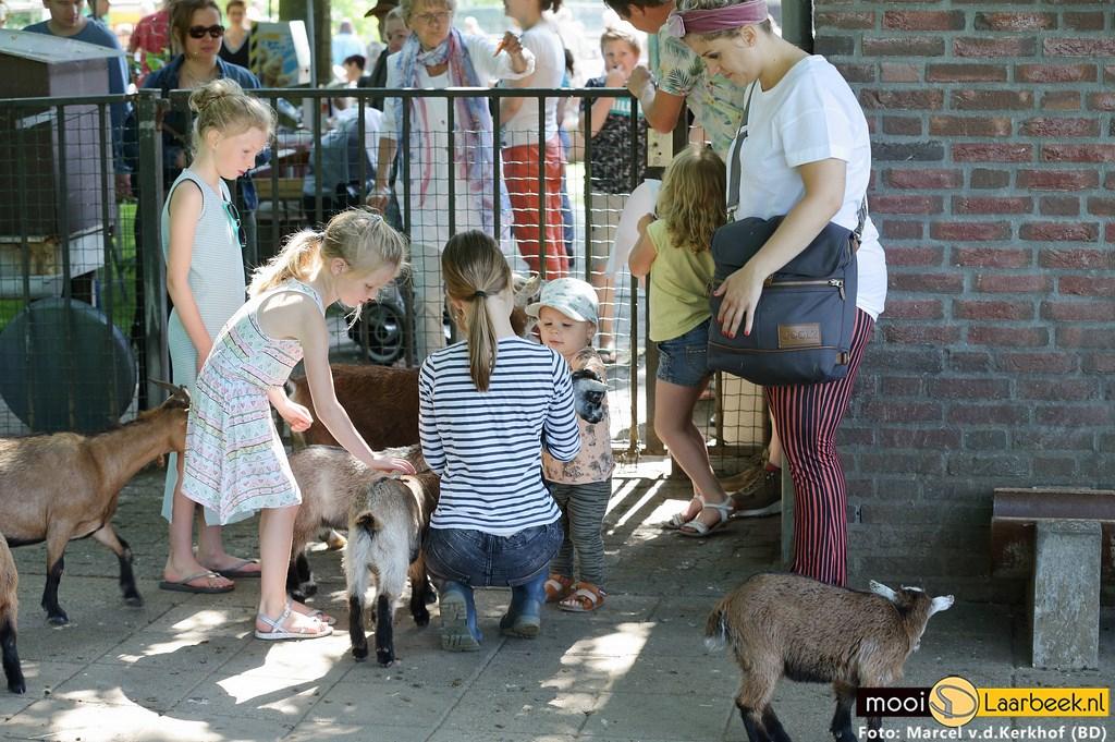Foto: Marcel van de Kerkhof (B&D) © deMooiLaarbeekkrant