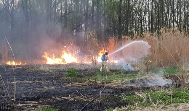 De buitenbrand aan de Opstal op 9 april   | Fotonummer: 9b4917