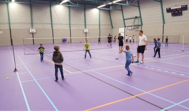 De Laarbeekse jeugd kon tijdens de Roefeldag kennismaken met Badminton Club Lieshout   | Fotonummer: f58dec