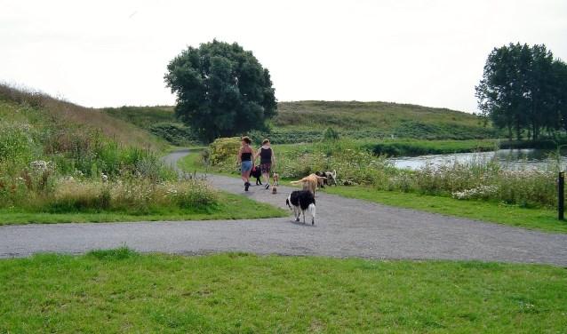 De gemeente Oegstgeest gaat in het grootste deel van het gebied rond de Klinkenbergerplas een permanente aanlijnplicht invoeren. De hondenvrienden verzetten zich hiertegen. | Foto Willemien Timmers