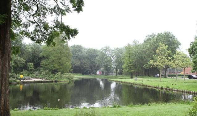 Lisse won dit jaar de verkiezing Groenste dorp van Nederland. Het grootste deel van de gemeenteraad voelt er niets voor deze verkiezing ook nog op Europees niveau in te gaan. Daar is namelijk al snel 50.000 euro voor nodig.