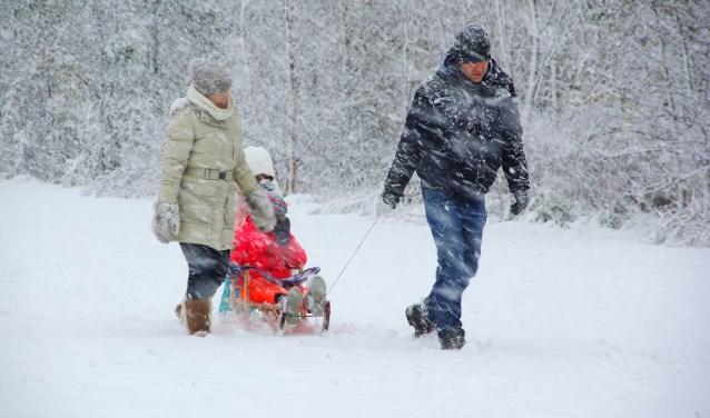 Winterse taferelen in het Vroege Vogelspark. | Foto Willemien Timmers