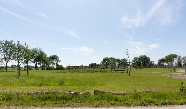 Slechts een strook van Park Landskroon was volgens de wethouder bedacht als losloopgebied. | Archieffoto Wil van Elk
