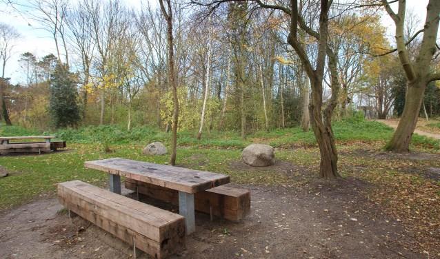 De picknicktafels in het De Ridderpark. | Foto: Adrie van Duijvenvoorde