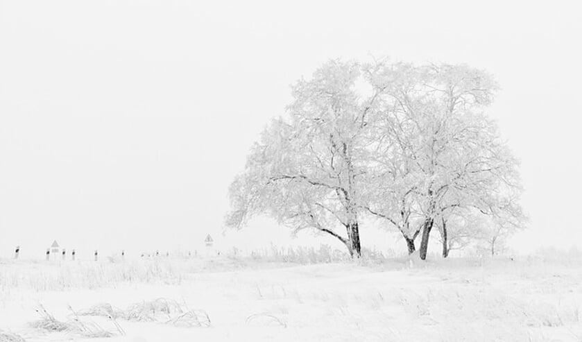 Gezocht: mooie winterse plaatjes voor in de krant | Foto: pr