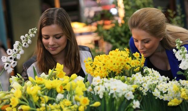 Vernieuwd eigentijds fris tuinidee de bloemenkrant