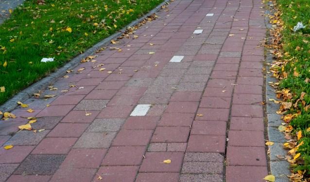 Als gevolg van de aanhoudende droogte kamt het fietspad langs de Engelendaal met losliggende tegels.