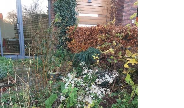 Winterklaar Maken Tuin : Winterklaar maken van de tuin in een paar stappen
