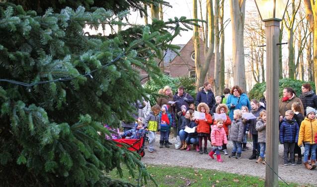 Door het zingen van kerstliedjes ontstaken de kinderen de lichtjes in de kerstboom.