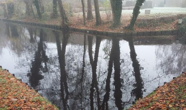 De vijver in het Heerenschoolbos achter De Wilbert.