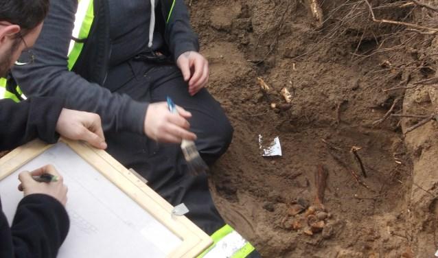 Bot uit bovenbeen steekt uit de grond. | Foto: Piet de Boer