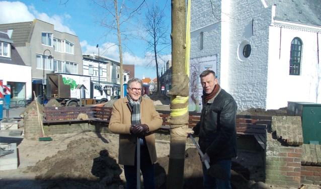 Martijn Bilars (links) en Henri de Jong bij de eerste geplante krimlinde bij de Witte Kerk. | Foto en tekst: Piet de Boer
