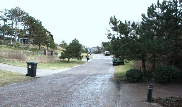 In de villawijken Dobbelmannduin en de Zuid moet men binnenkort ook het snippergroen legaliseren.
