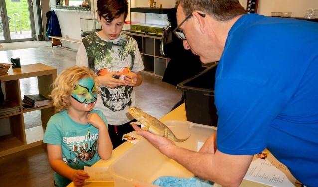 Bert van Eijk van het MEC toont een baardagaam aan een jonge bezoeker, die in reptielenstijl is geschminckt.