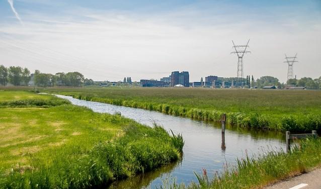De Boterhuispolder gezien vanaf de Nieuweweg. Rechts van de sloot staat het gras nog hoog, links is het gemaaid. | Foto: J.P. Kranenburg