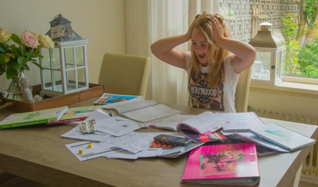Charlotte Laméris is hard aan het blokken voor de laatste examenloodjes.   Foto: met dank aan Charlotte