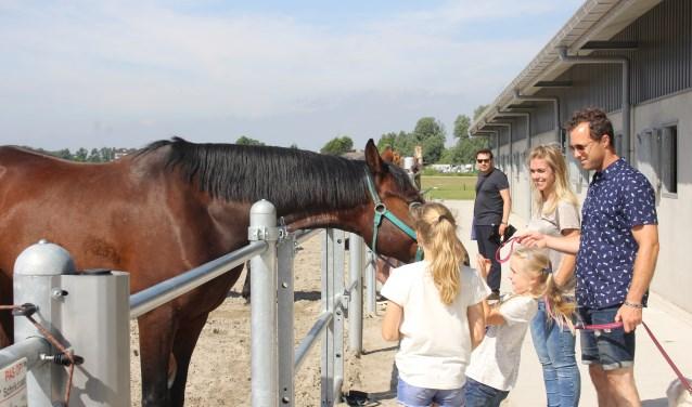 Paardjes kijken tijdens de jaarlijkse happening. | Foto: Annemiek Cornelissen