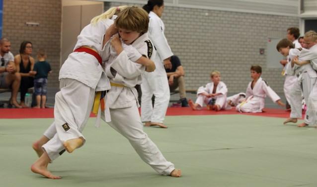 Op acht judomatten werd er zeer sportief gestreden voor de medailles. | Foto Karel David van der Gun