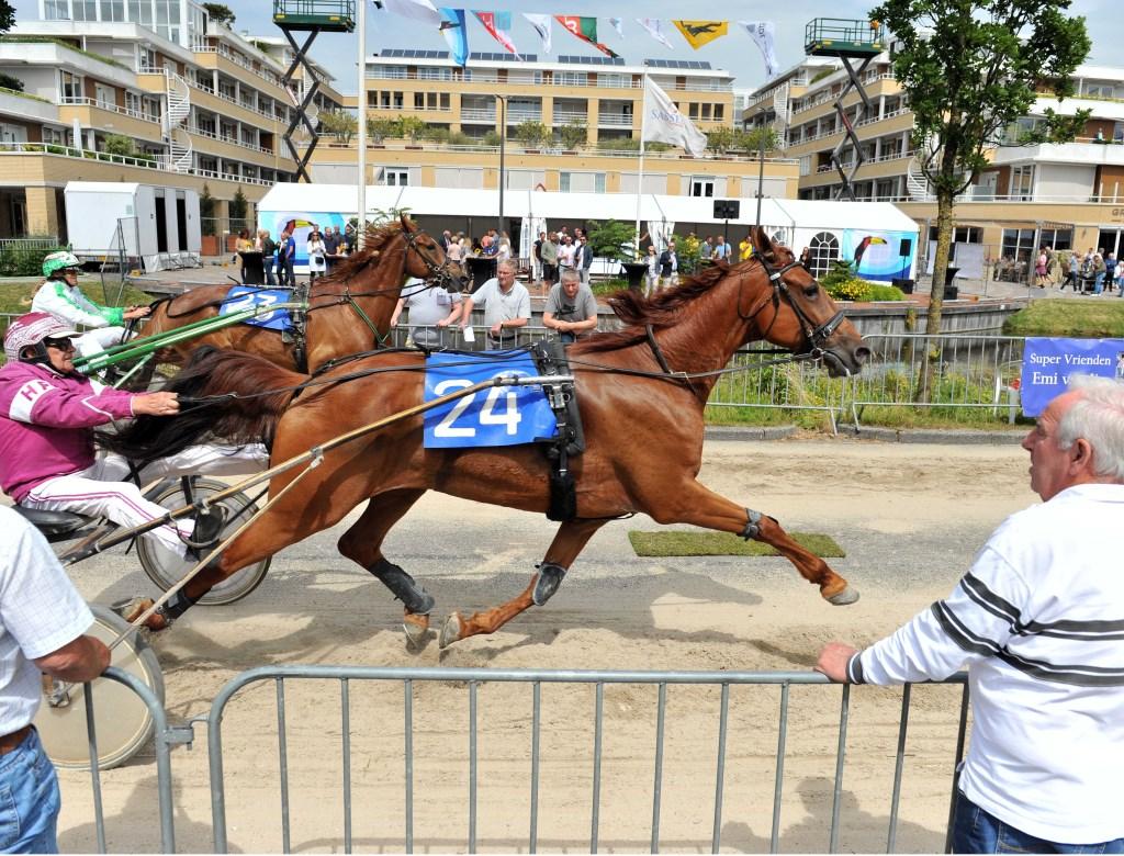De paarden snellen over de Teijlingerlaan. | Foto: Willem Krol
