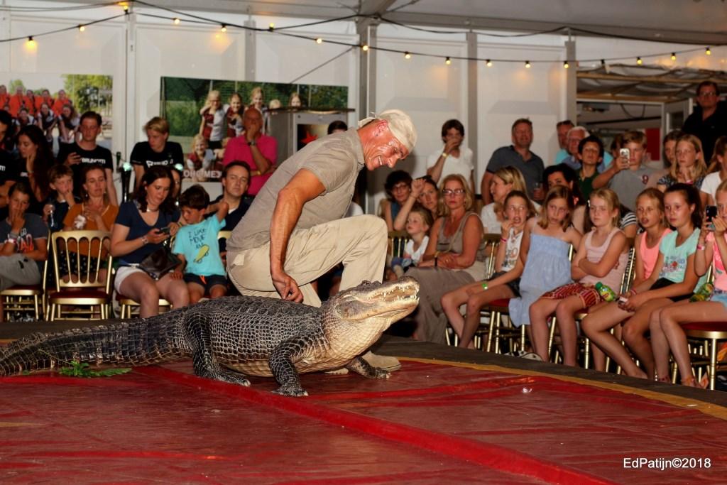 Toch wel een beetje eng met een krokodil in een circusact. | Foto Ed Patijn Foto: Ed Patijn © uitgeverij Verhagen