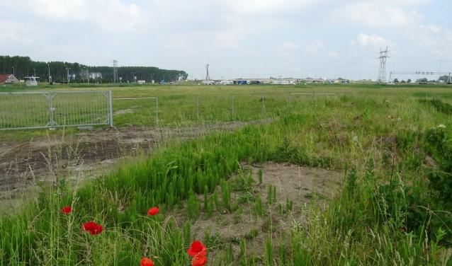 Het terrein tussen de Persant Snoepweg en de A4 waar de grote blauwe doos van Ikea had moeten komen.