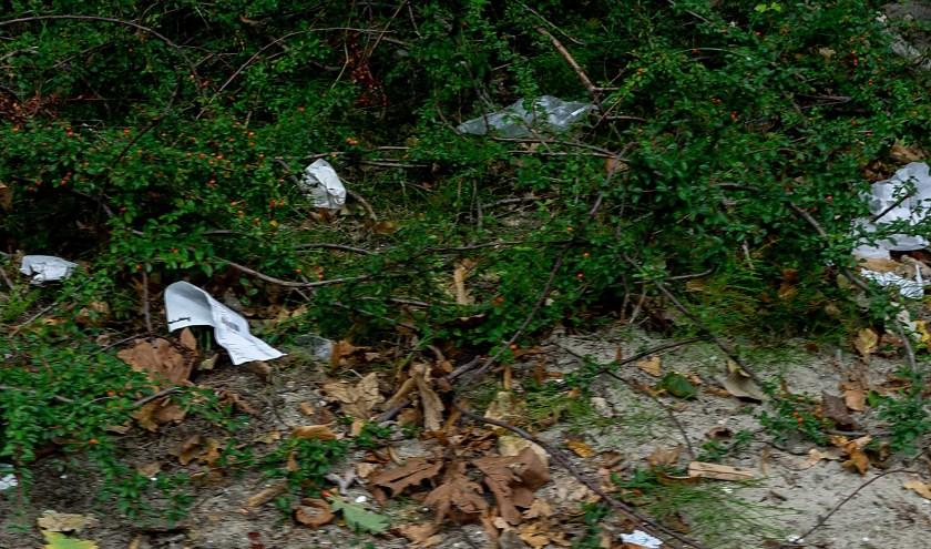 Als het aan Marieke van Leeuwen ligt, wordt er zaterdag 15 september een hoop zwerfafval opgeruimd in Leiderdorp.