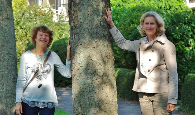 Sarah den Hollander en Klaske van der Mandele. 'Uitgangspunt moet zijn dat zoveel mogelijk bomen blijven.' | Foto Willemien Timmers