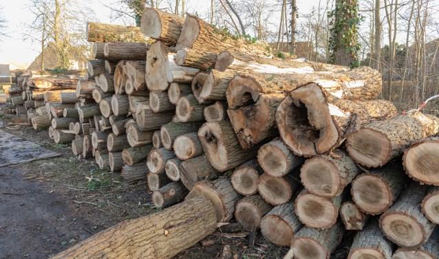 Een flinke stapel pallethout ligt klaar aan de Haarlemmerstraatweg. | Foto Wil van Elk
