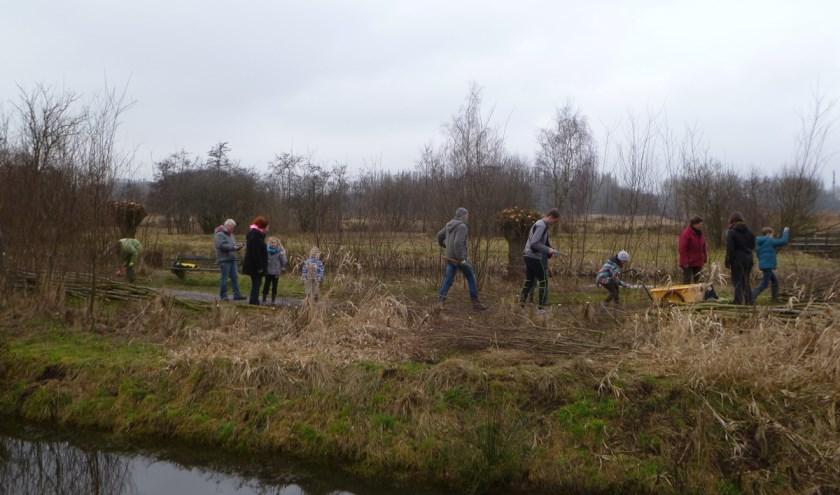 Een goed beheerd griend heeft een hoge natuurwaarde en daar is het de vrijwilligers ook om te doen.| Foto: PR