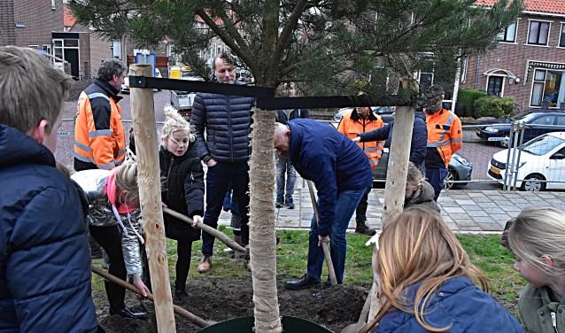 Rien Nagtegaal plantte, samen met leerlingen van de Groen van Prinstererschool bij zwembad Aquamar. | Foto: Piet van Kampen