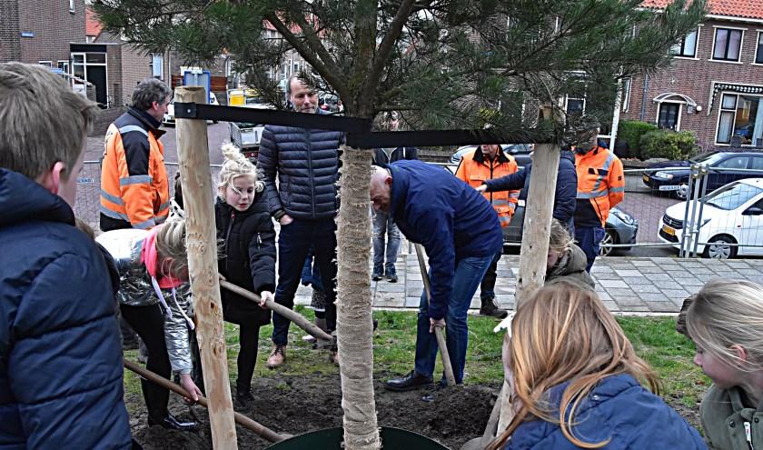 Rien Nagtegaal plantte, samen met leerlingen van de Groen van Prinstererschool bij zwembad Aquamar.   Foto: Piet van Kampen