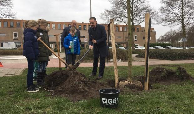 Leerlingen van de Antoniusschool planten samen met wethouder Rob ten Boden nieuwe fruitbomen aan de Componistenlaan.