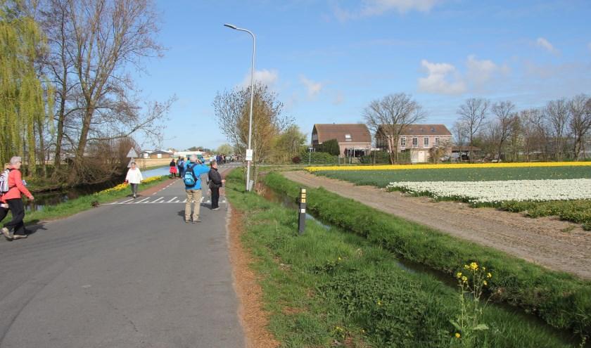 Deelnemers kunnen tussen de 6 en 40 kilometer wandelen. | Foto: pr.