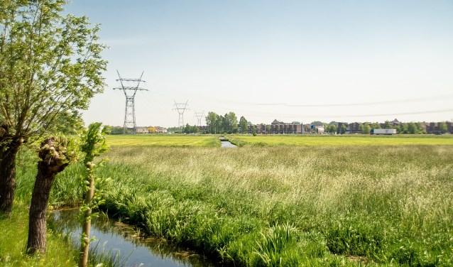 De Boterhuispolder half mei 2018, gezien vanaf de Nieuweweg. Op de voorgrond staat het gras hoog, op de achtergrond is gemaaid.