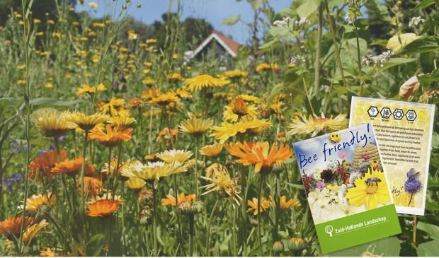 Met de gratis bloemzaadjes komen er bloemen in je tuin waar bijen dol op zijn.