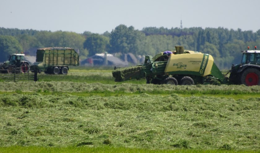 De maaimachines hebben hun werk gedaan in de Achthovenerpolder. Tractoren zuigen het gemaaide gras naar binnen en persen het tot blokken.
