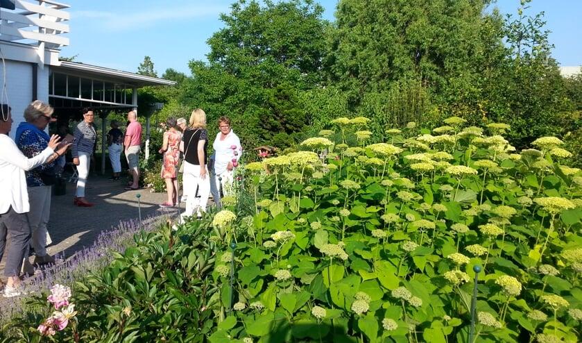 Maandag- en woensdagavond werden de tuinen door de deelnemers bekeken.