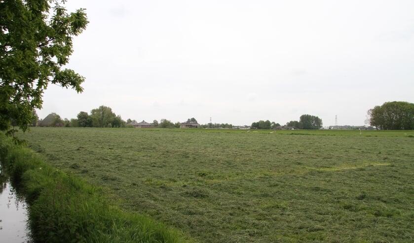 Het gebied Geestwater ziet er over enkele jaren heel anders uit, als de woningbouwplannen doorgaan.