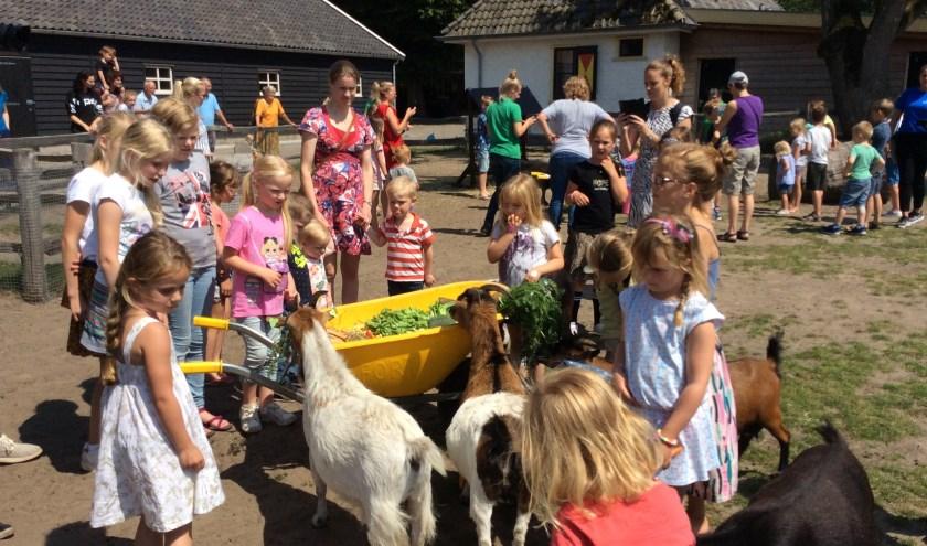 Vooral de geiten deden zich tegoed aan de kruiwagens vol groente, fruit en brood.