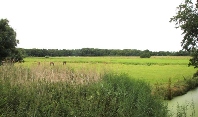 Voor dit gebied ligt een verzoek om een verklaring van geen bezwaar voor 2 hectaren zonnepanelen.