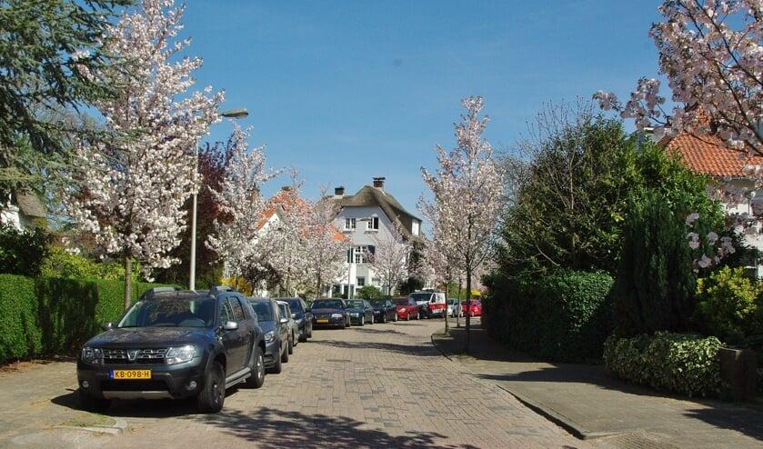Grotere woningen zijn in Oegstgeest het meest gewild. | Archieffoto Willemien Timmers