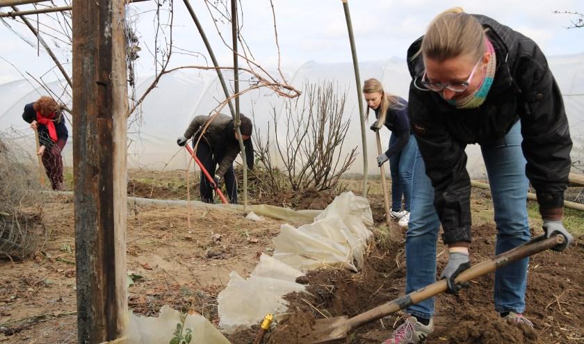 Een impressie van NLdoet in 2018: bij zorgboerderij De Locatie wordt er hard gewerkt. Foto: Jan de Rond