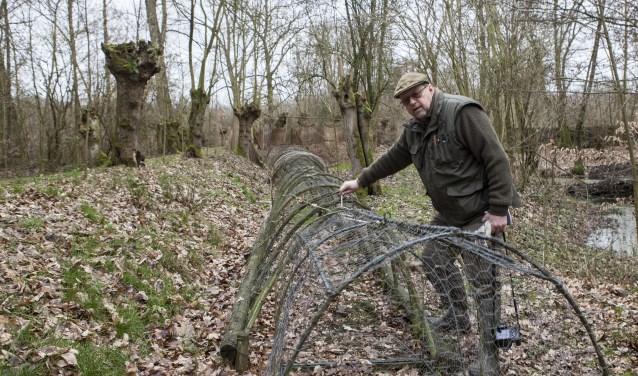 Rut Stokman toont de sporen van de bever in Eendenkooi Maaspoort. Foto: Michel van de Langenberg