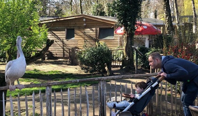 Rob Gevers met zijn zoontje Alex in De Bossche Hoeve