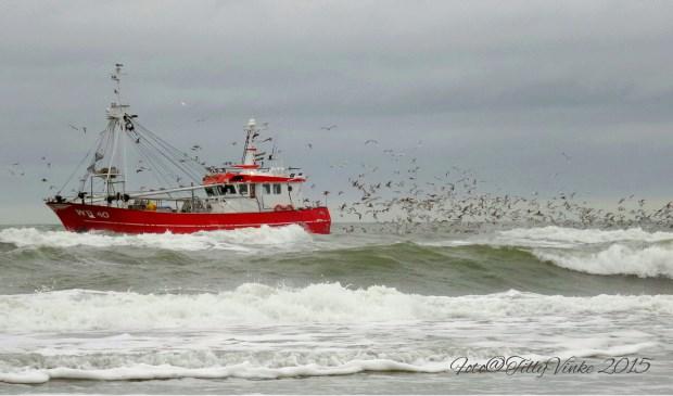Kotter voor de kust van De Koog. Paal 19,5 op 17 november. Foto: Tilly Vinke.