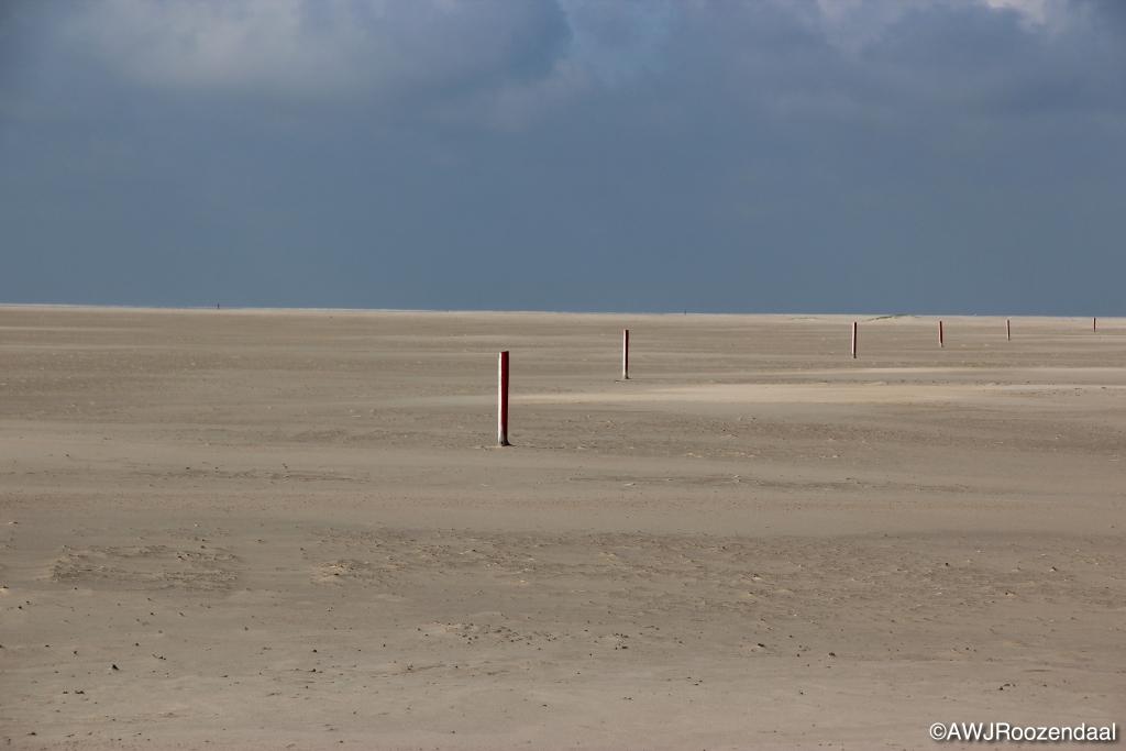 Guus Roozendaal © Mediabureau Langeveld & De Rooy