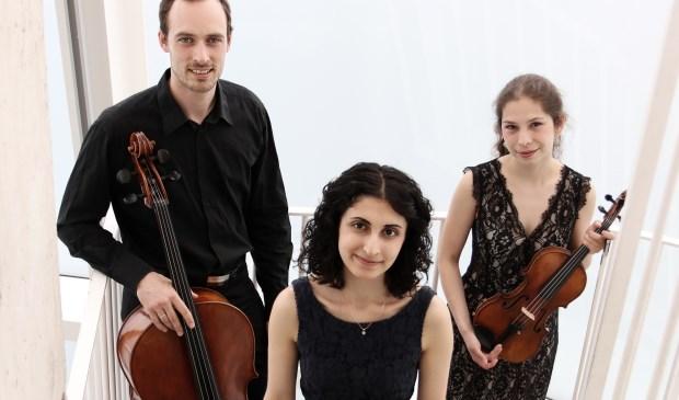 Het Ludus Trio.