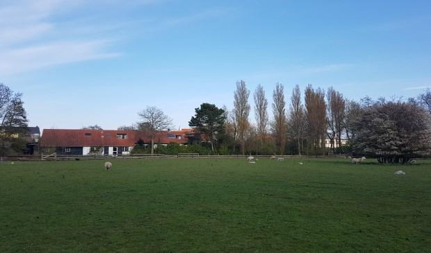 Het Landje van Pelgrim bij de Gasthuisstraat en de Pontweg.