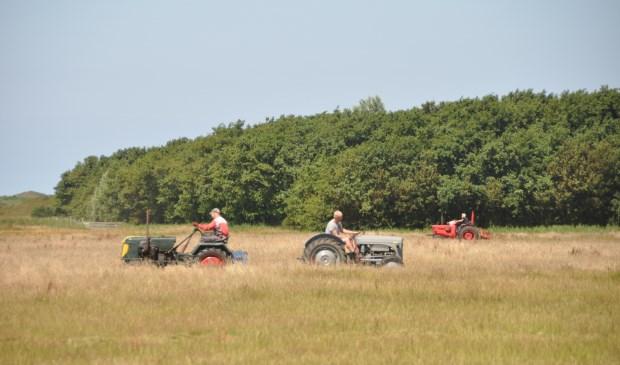 Drie deelnemers aan het werk in het veld.